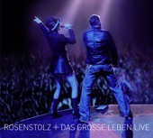 Das grosse Leben (Live 2006) [2 Disc]