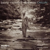 """David """"Fathead"""" Newman - Chillin'"""