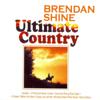 Brendan Shine - Once a Day artwork