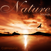 Nature Sounds-Calmsound