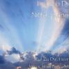 Bach - Busoni: Ich Ruf Zu Dir, Herr Jesu Christ Bwv 639 - Franco Di Nitto, piano