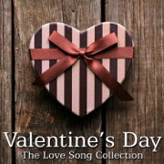 Valentines Day - The Love Song Collection (Instrumental) - Various Artists - Various Artists