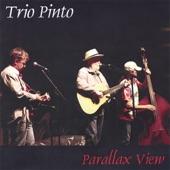 Pinto Bennett / Trio Pinto - Ballad of El Vasco (Devil's Right Hand)