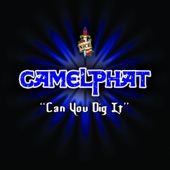 Can You Dig It - Single