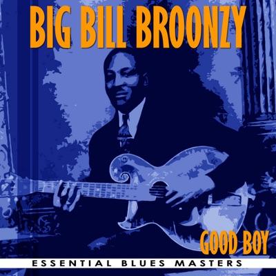 Good Boy - Big Bill Broonzy