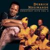 Derrick Ndzimande - Sihamba Nojesu artwork
