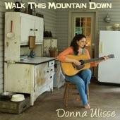 Donna Ulisse - In My Wildest Dreams