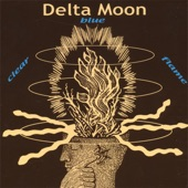 Delta Moon - Cool Your Jets
