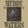 Muddy Waters - King Bee  artwork