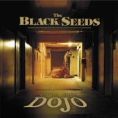 The Black Seeds - Cool Me Down