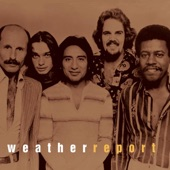 Weather Report - Young And Fine (Album Version)