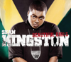 Sean Kingston - Beautiful Girls (Edit) artwork