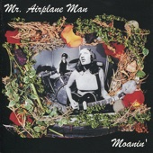 Mr. Airplane Man - Commit a Crime