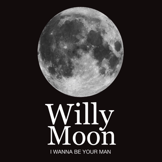 moon single men What did it take to become a member of the most exclusive club in human history  twelve men who have visited another world  winning and serving a single term.