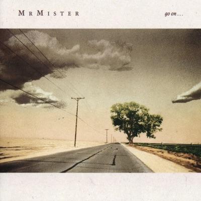 Go On... - Mr. Mister