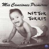 Nestor Torres - Voulez Vous Danser