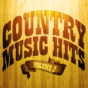 Various Artists - 100 Country Music Hits, Vol. 2
