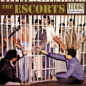 The Escorts - All We Need Is Another Chance