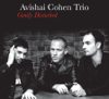 Avishai Cohen Trio - Gently Disturbed (Bonus Track Version)  artwork