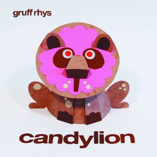 Gruff Rhys