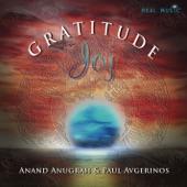 Paul Avgerinos - Gratitude Joy
