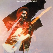 Albert Collins - Things I Used to Do