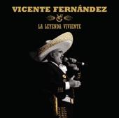Vicente Fernández - México Lindo y Querido