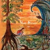 Shawn Mercer - It Overflows