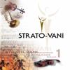 Strato-Vani - Il Silenzio artwork