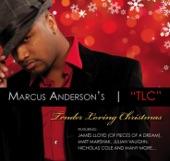 Marcus Anderson - Winter Wonderland (feat. Julian Vaughn)