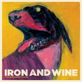 Iron & Wine - The Devil Never Sleeps