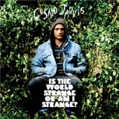 Cosmo Jarvis - She Doesn't Mind
