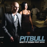 Shut It Down (feat. Akon) - Single