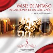 Serie Orgullosos: Aquellos Valses de Antaño en Callejones De Un Solo Caño, Vol. 5