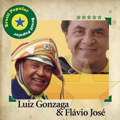 Brasil Popular: Luiz Gonzaga e Flávio José - Luiz Gonzaga