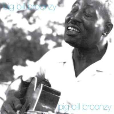 Big Bill Broonzy - Big Bill Broonzy
