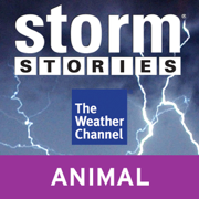 Storm Stories: Hallem, NE Tornado (Unabridged) [Unabridged Nonfiction]