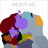 Wild Flag - Glass Tambourine