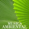Musica Ambiental - Musica Ambiental Clube