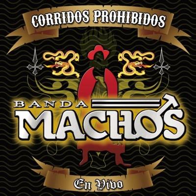 Corridos Prohibidos (En Vívo) - Banda Machos
