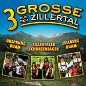 3 Grosse Aus Dem Zillertal, Folge 1-Various Artists