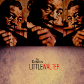 The Genius of Little Walter (Digitally Remastered)