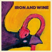 Iron And Wine - Boy With The Coin