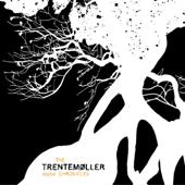 Les Djinns (Trentemøller Remix)