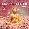 Buddha-Bar XII (by Ravin)