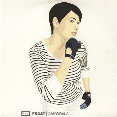 Amygdala (The Remixes) - EP - Frost