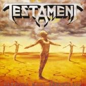 Testament - Envy Life