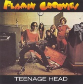 The Flamin' Groovies - Teenage Head
