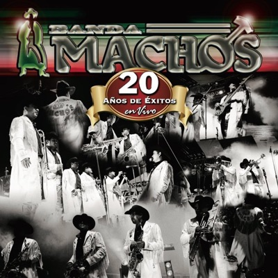 20 Años de Exitos en Vivo - Banda Machos