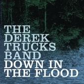 The Derek Trucks Band - Down In The Flood (Album Version)